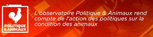 politique-animale